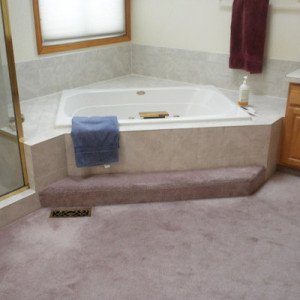 Before Highlands Ranch Bathroom Remodel