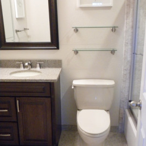 Guest and Master Bath Remodels